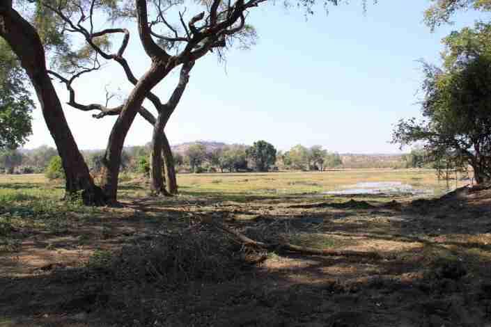 view of Gonarezhou NP, Zimbabwe