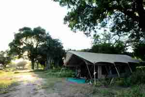 Love Bird Special at Zambezi Expeditions-6