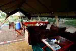 Love Bird Special at Zambezi Expeditions-5