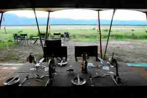 Love Bird Special at Zambezi Expeditions-4