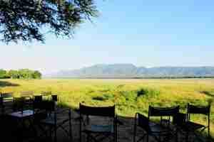 Love Bird Special at Zambezi Expeditions-3