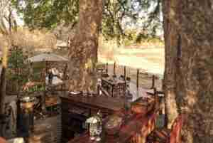 Love Bird Special at Kanga Camp-7