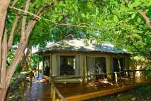 Love Bird Special at Kanga Camp-18