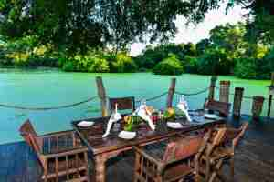Love Bird Special at Kanga Camp-25