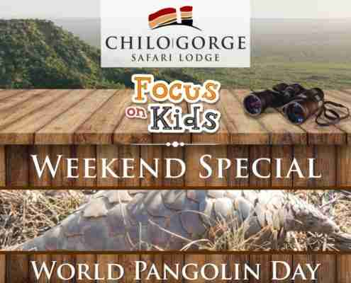 Focus on Kids Weekend Special