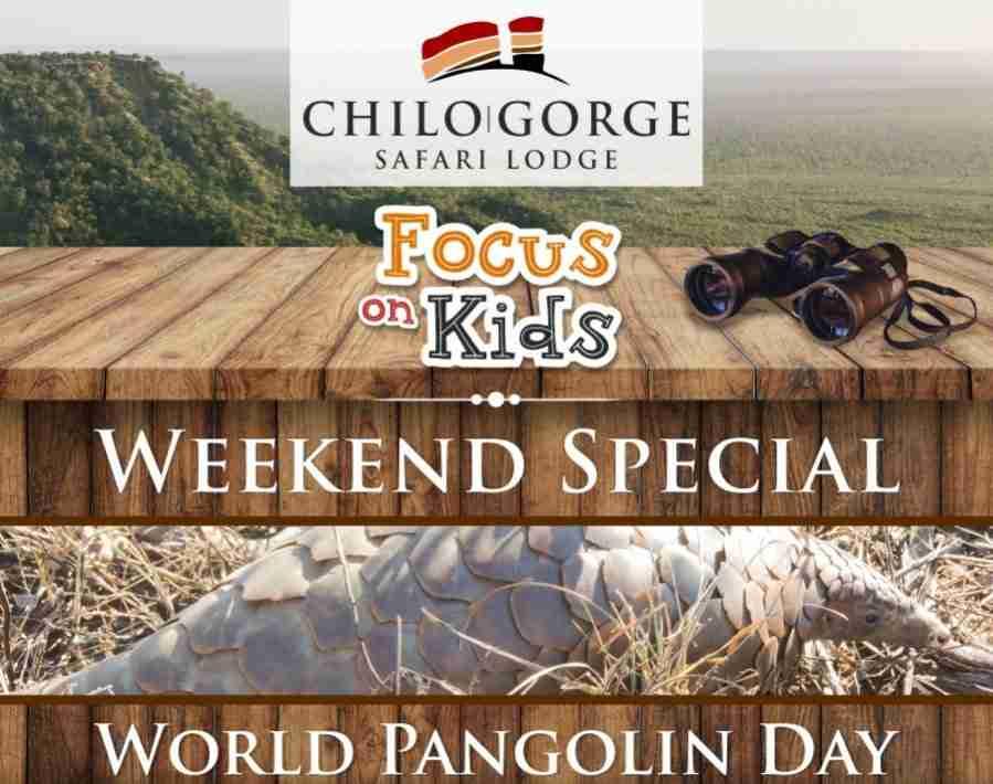 Focus on Kids Weekend Special