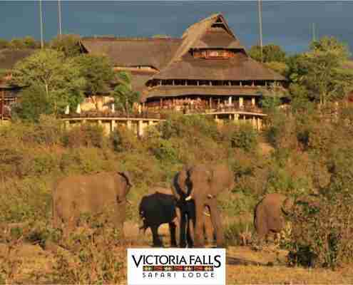 Victoria Falls Safari Lodge is Getting a Touch-Up Feature Image