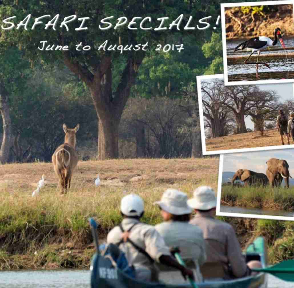 Safari Specials 2017 Winter Promotions at Natureways Safaris