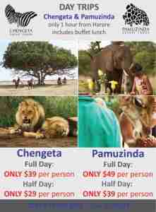 dunhuramambo-day-trips - 2017 Winter Promotions