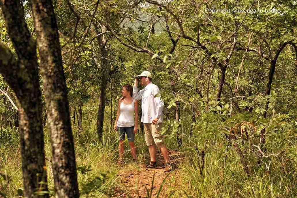 walking in musangano Zimbabwe