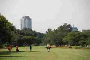 Royal Harare golf course