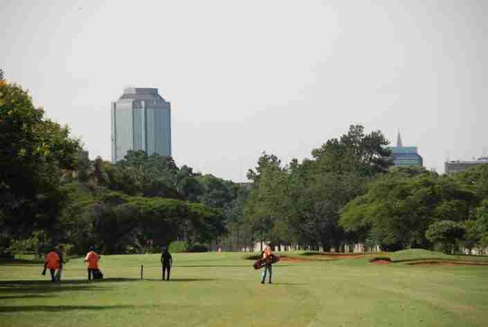Royal Harare golf course