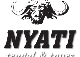 nyati travel & tours logo